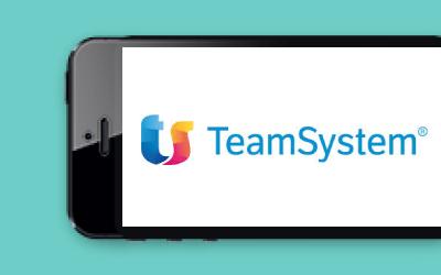 TeamSystem - Direct Marketing Synectix