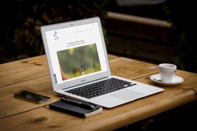 Liberamente - Web Marketing Synectix