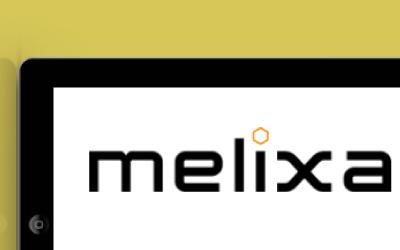 portfolio web marketing melixa